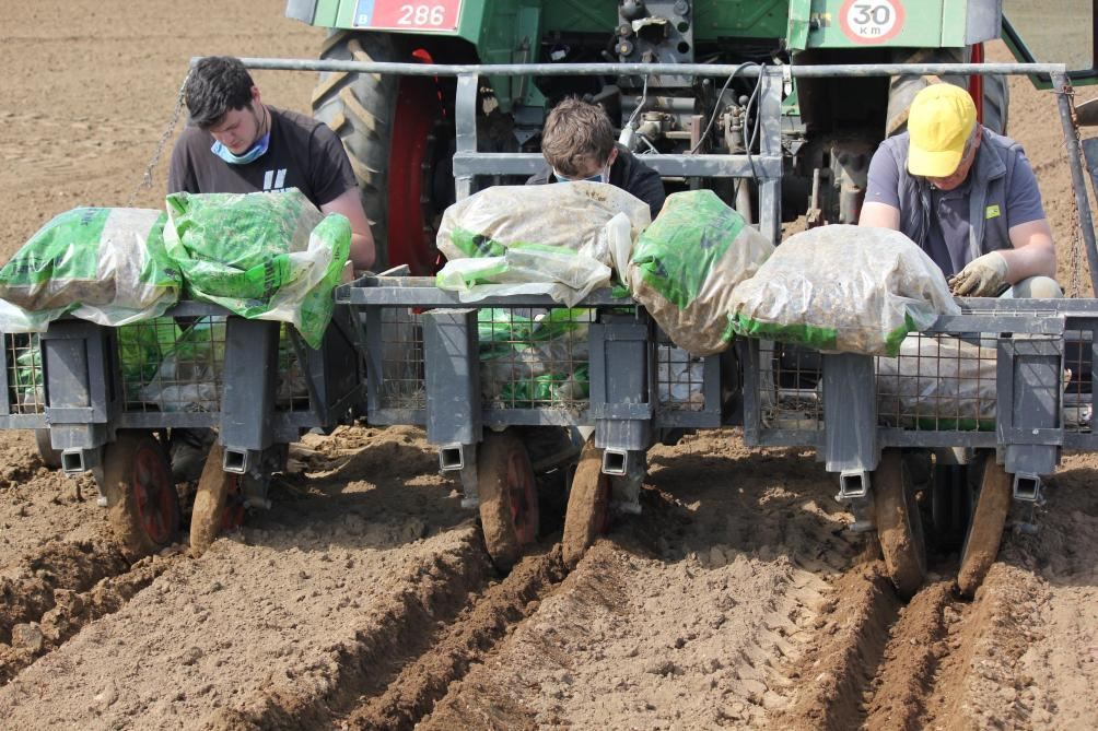 Tomorrow, the Earth: in Libramont, miscanthus to preserve nitrate collection waters